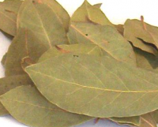 Indian Bay Leaf, Malabar leaf,